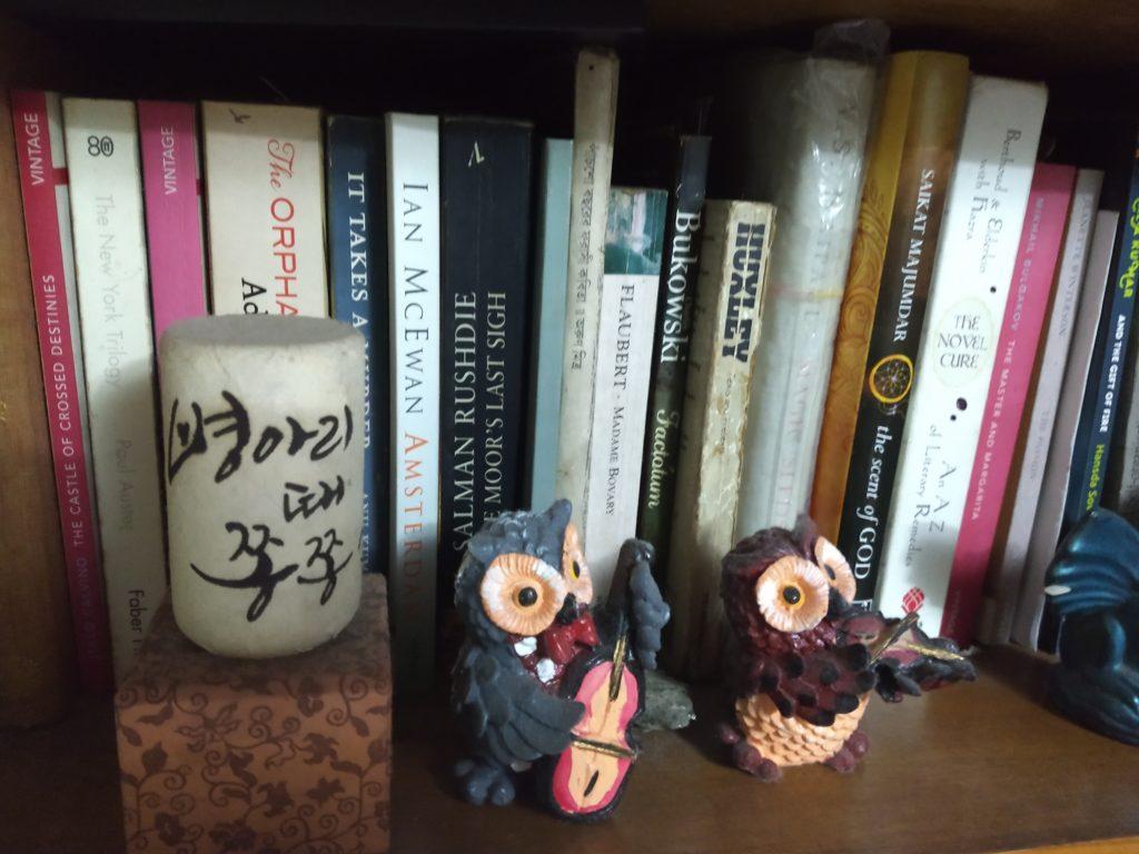 bookshelf photo